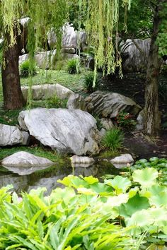 Beautiful gardens, love the use of boulders, stones