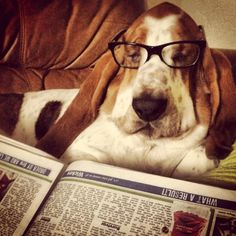 Catching up on the snooze...I mean news!