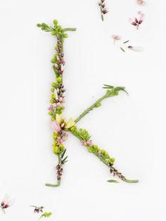 Blossom Type Floral Typography