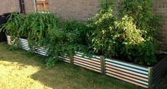 Raised garden bed Ideas#bed #garden #ideas #raised Outdoor Planters, Garden Planters, Indoor Garden, Backyard Projects, Garden Projects, Garden Ideas, Unique Gardens, Small Gardens, Metal Raised Garden Beds