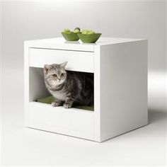 A Lovely Shelter. Binq Design has come out with the Bloq a modern living solution for you and your pet. Cat Jungle Gym, Cat Cube, Diy Cat Toys, Colourful Cushions, Pet Furniture, Cat Decor, Litter Box, Diy Stuffed Animals, Animal Design