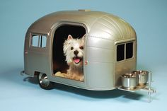 puppy airstream!!!  oh my Sookie is so gonna get this from santa!!!!
