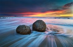 Moeraki Boulders by Yan Zhang The Moeraki Boulders are unusually large and spherical boulders lying along a stretch of Koekohe Beach on the wave cut Otago coast of the South Island of New Zealand between Moeraki and Hampden. Moeraki Boulders, Visit New Zealand, Modern Landscaping, Painting Edges, Stretched Canvas Prints, Bouldering, Natural, Landscape Photography, Amazing Photography
