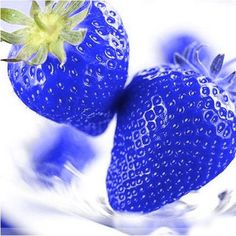 500Pcs Blue Strawberry Seeds Heirloom Super Strawberry Garden Seeds Garden Climbing Plant - Newchic Mobile.
