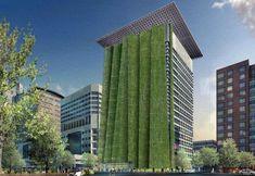 fachadas-verdes-diarioecologia #fachadasverdesverticalgardens