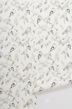 Aviary Wallpaper #anthropologie on sale at $79.00 per roll. So delicate and pretty!!!!