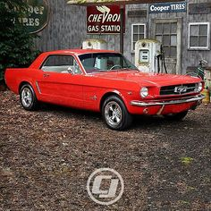 Vicki's 1965 #Mustang is picture perfect.