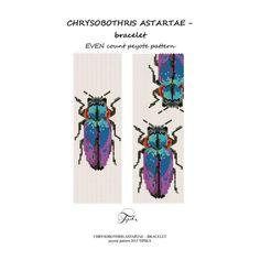 (5) Name: 'Jewelry : Peyote pattern chrysobothris beetle