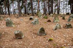 Mizar - cmentarz tatarski został założony w pierwszej połowie XVIII wieku, po osadzeniu Tatarów przez Jana III Sobieskiego.