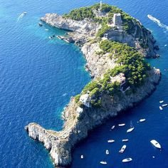 Li Galli is an island in Italy that's shaped like a dolphin.