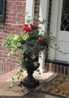 urn spilling with ivy, geraniums, and petunias.. so welcoming