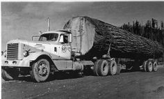 Centennial Log 1959....A forty foot section of Douglas Fir weighing sixty tons was loaded onto a Georgia Pacific Log Truck and started on its way to the Centennial Exposition grounds in Portland, Oregon. The log was cut by W.G. (Pokey) Allen a Camas Valley resident. The tree was originally 91/2 feet in diameter and over 200 feet tall.