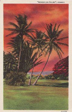 Vintage linen postcard.  Hawaiian sunset; Waikiki.