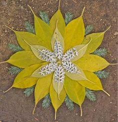 Mandala Art by Nature Mandala Art, Art Et Nature, Nature Crafts, Land Art, Art Floral, Art Environnemental, Op Art, Ephemeral Art, Pressed Flower Art