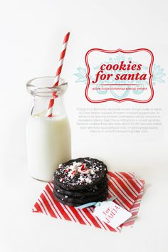Dear Santa, I have left you some cookies and milk with a stripey straw. I hope you like it. Btw, did you get my Christmas list? I hope you did. I have been a pretty good girl this year. Thanks.