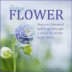 Merveilleux Discover And Share Flower Bloom Quotes. Explore Our Collection Of  Motivational And Famous Quotes By Authors You Know And Love.