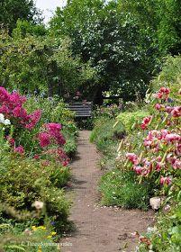 Three Dogs in a Garden: Down the Garden Path: Part 1