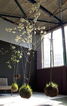 Flowering trees as a string garden.