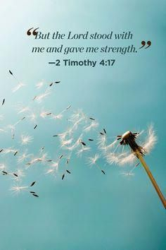 30 Bible Quotes That Will Change Your Perspective on Life - Jesus Quote - Christian Quote - 30 Inspirational Bible Quotes About Life Scripture Verses of the Day The post 30 Bible Quotes That Will Change Your Perspective on Life appeared first on Gag Dad. Quotes Dream, Life Quotes Love, Quotes About God, Baby Quotes, Christian Quotes About Life, Wisdom Quotes, Quotes About Worship, Quotes That Inspire, Quotes About Nurses