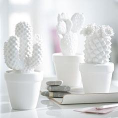 cactus Porselein Wit -