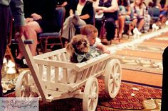 Medium Flower Girl Wedding Wagon - and maybe Molly can ride too!!