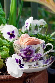 かわいいティーカップの中にマカロン。本物のパンジーを添えて、春のを感じるスタイリング。