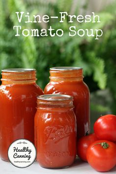 Vine-fresh tomato soup - Canning Canning Tomato Soup, Tomato Soup Can Recipe, Tomato Juice Recipes, Fresh Tomato Soup, Cream Of Tomato Soup, Canning Tomatoes, Canned Tomato Sauce, Tomato Canning Recipes, Tomato Soups