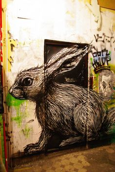 Graffiti Bunny. This piece has good detail in regards to what it is and the tools used. The attention to fur helps it to stand out against the plain white background as well as the dark door on which it is drawn on. The angle of the camera captures the graffiti at a good light.