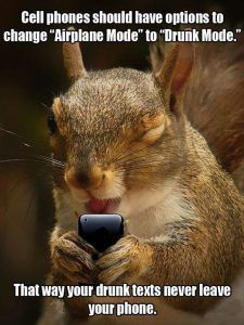 Cell Phones Should Have A Drunk Mode That Way Your Drunk Texts Never Leave Your Phone funny drunk ideas humor funny pictures funny images Funniest Pictures Ever, Very Funny Pictures, Funny Animal Pictures, Funny Images, Funny Squirrel Pictures, Fail Pictures, Animal Pics, Drunk Squirrel, Squirrel Memes