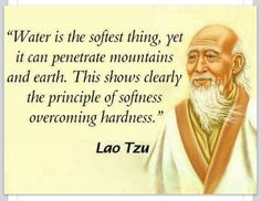 Softness in Tai Chi & Qigong by Lao Tzu Lao Tzu Quotes, Wisdom Quotes, Quotes To Live By, Life Quotes, Taoism Quotes, Zen Quotes, The Words, Positive Quotes, Motivational Quotes