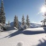 Colorado is world class winter playground there are many incredible places to take your snowshoe trips, from here to there. Here are a few of our favorites: