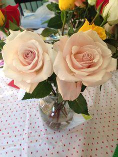 2 very light pink roses Light Pink Rose, Pink Roses, Girly, Flowers, Beautiful, Women's, Girly Girl, Royal Icing Flowers, Flower