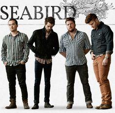 Seabird | Band, Music, Awesome - adoreeeee these guys.