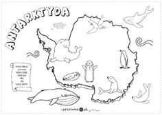 Zwierzęta Antarktydy - Printoteka.pl Continents Activities, Montessori Activities, Activities For Kids, Continents And Countries, Countries And Flags, Geography For Kids, Teaching Geography, Stem Science, Science For Kids