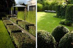 """Энтони Пол: """"Я люблю раскрашивать ландшафт растениями..."""""""