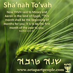 shavuot wishes hebrew