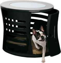 OMG coolest dog bed ever!!