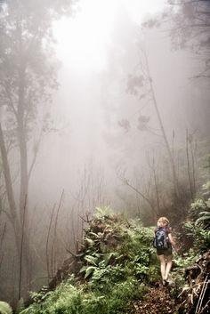 Wow, gorgeous adventure shot.