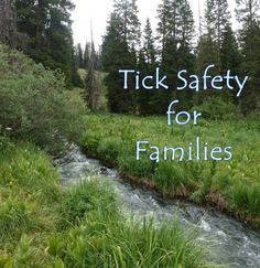 Longing to take your kids outside to enjoy some hiking, fishing, camping or other wilderness fun this outdoor season, but feel slightly deterred at the thought of contracting ticks? These creepy cr…