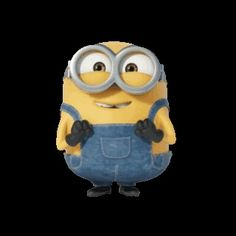 102 Best Minion Bob Images On Pinterest