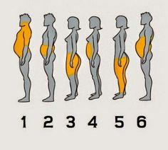 Regardez quelle partie de votre corps est la plus grasse: vos saurez quel genre de vie vous avez et comment faire avec - See more at: http://sain-et-naturel.com/regardez-quelle-partie-de-votre-corps-est-la-plus-grasse-vos-saurez-quel-genre-de-vie-vous-avez-et-comment-faire-avec.html#sthash.1ZS6Dx7u.dpuf