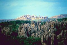 eight of the world's most incredible rock formations-stone forest, china.
