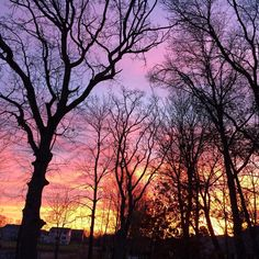 """Good morning #everydayalittlewonder"""