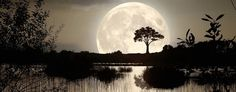 'Supermoon' set to light up the night sky. (Thinkstock)