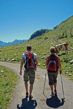 Vordertrattberg – Hintertrattberg – Seewaldsee: St. Koloman Aktiv, Logs, Bradley Mountain, Journey, The Incredibles, Backpacks, Bavaria Germany, Road Trip Destinations, Landscape