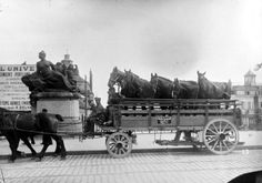 """Sick horses being conveyed to a Veterinary Hospital in a specially built wagon.""  David Metherell> The Great War Forum (World War I Discussion Group)"