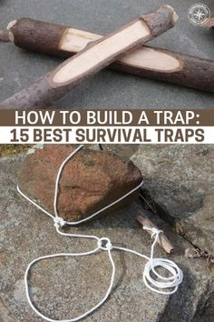 How to Build a Trap: 15 Best Survival Traps How to Build a Trap: 15 Best Survival Traps – Knowing how to make and set traps is a need to know skill for any. The post How to Build a Trap: 15 Best Survival Traps appeared first on Welcome! Survival Life Hacks, Survival Quotes, Survival Food, Outdoor Survival, Survival Prepping, Survival Skills, Emergency Preparedness, Survival Supplies, Survival Stuff
