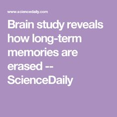 Brain study reveals how long-term memories are erased -- ScienceDaily