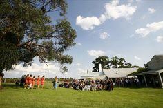 A stunning ceremony under 'The Big Tree'
