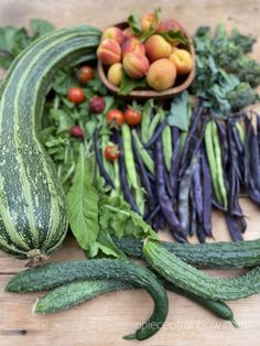 16 easiest vegetables to grow for even first time beginner gardeners! Fast growing from seeds, in pots & gardens for all year round harvest! - A Piece of Rainbow backyard, garden, vegetable gardening ideas, small space tips, grow your own food, homestead, homesteading #spring #summer #verticalgarden #ediblegarden #vegetablegardening #backyard #gardens #gardening #urbangardening #gardendesign #gardenideas #containergardening #DIY #homestead #gardeningtips #growfood #tomatoes Small Vegetable Gardens, Vegetable Garden Design, Small Space Gardening, Vegetable Gardening, Garden Spaces, Gardening For Beginners, Gardening Tips, Apple Tree Care, Winter Squash Varieties